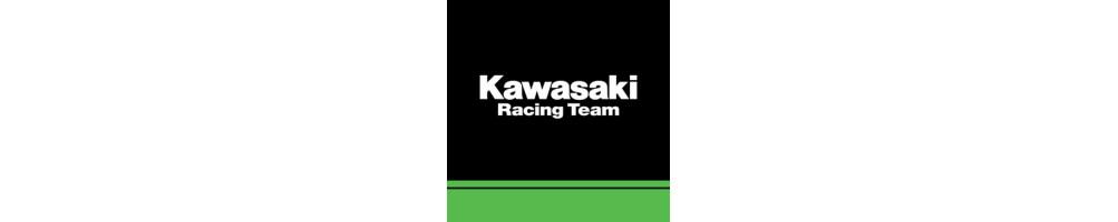 Kawasaki KRT WSBK